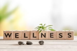 54123644 - wellness sign with wooden cubes and flowers and stones
